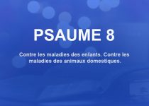 psaume 8